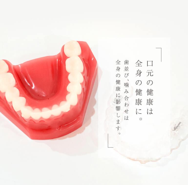 口元の健康は全身の健康に。